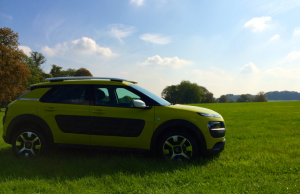 Citroen Cactus Flair e-HDi 92 ETG profile